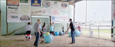 4-H youth work on showmanship by using practice sheep and swine.
