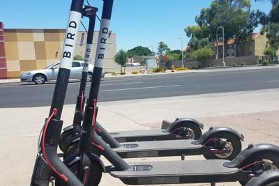 Birds are slowly flying out of the West Valley as Glendale joins Peoria in banning the electric scooters.