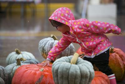 Fall fans brave rain at Harvest Festival