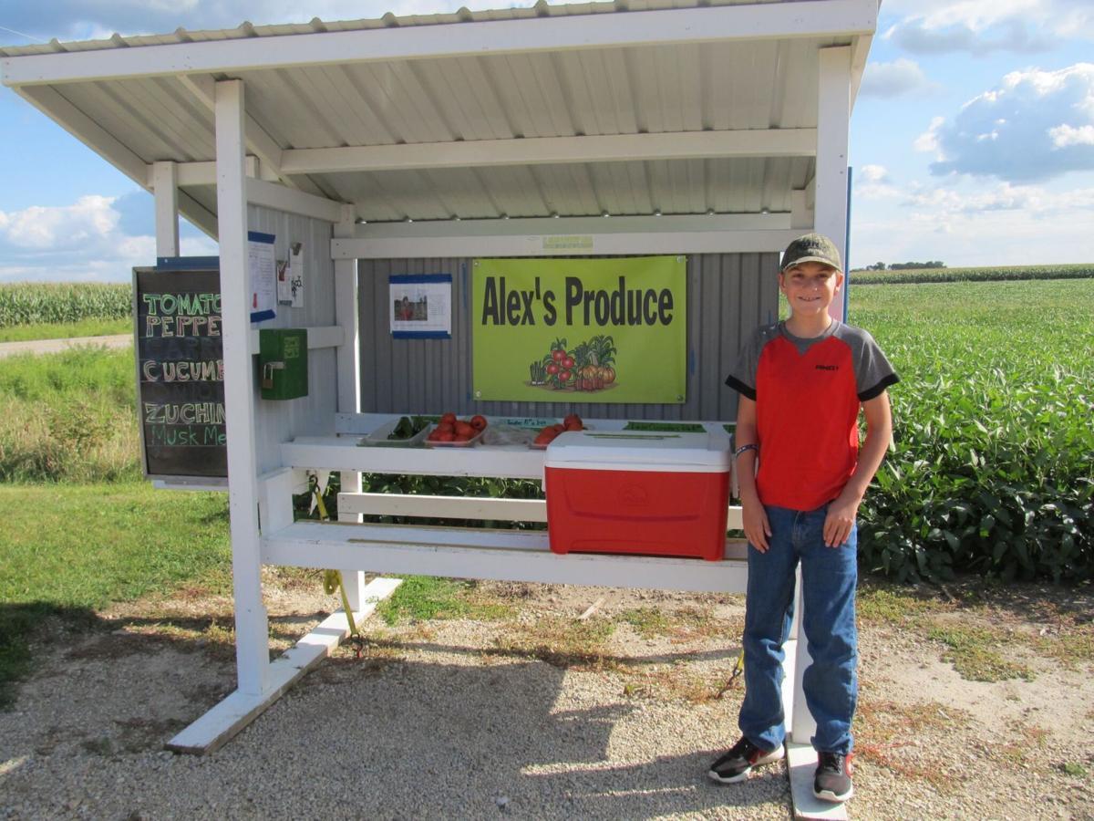Alex's produce 1