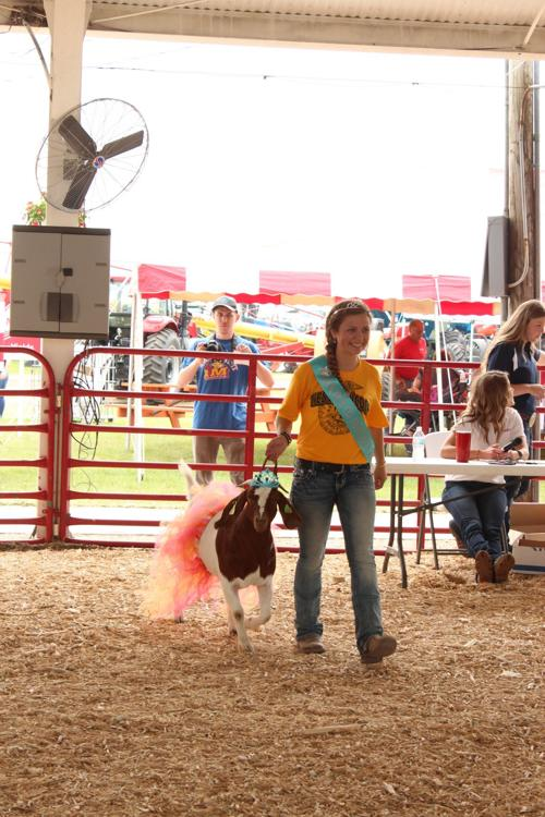 Hancock County Fair 2019