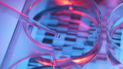 Can Life Insurance Companies Get Your Genetic Test Results?