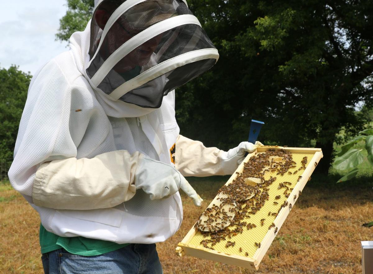 5c0ef9a4a3e He was one of 19 students awarded a beekeeping scholarship through the Iowa  Honey Producers Association. ASHLEY STEWART ...