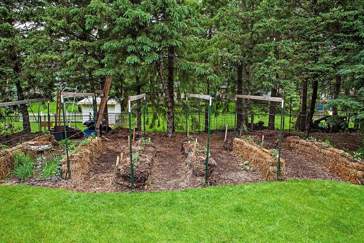 Joel Karsten's garden