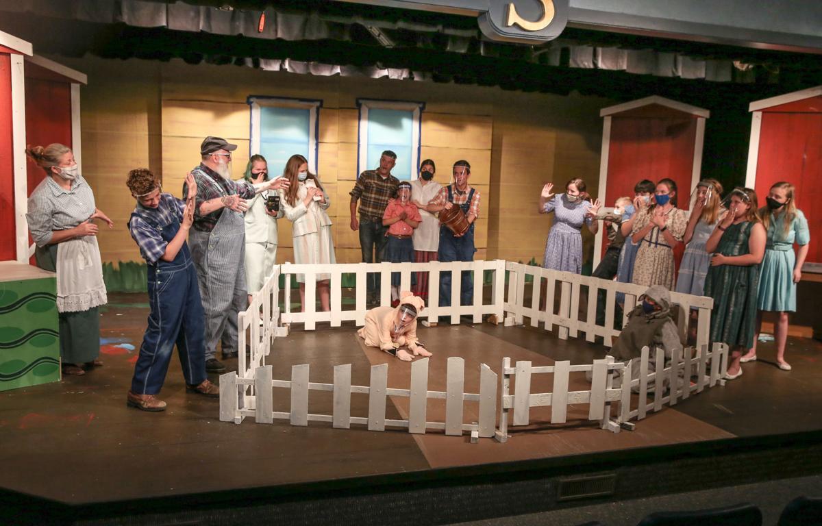 Stebens Children's Theatre - Charlotte's Web kids and adults cast