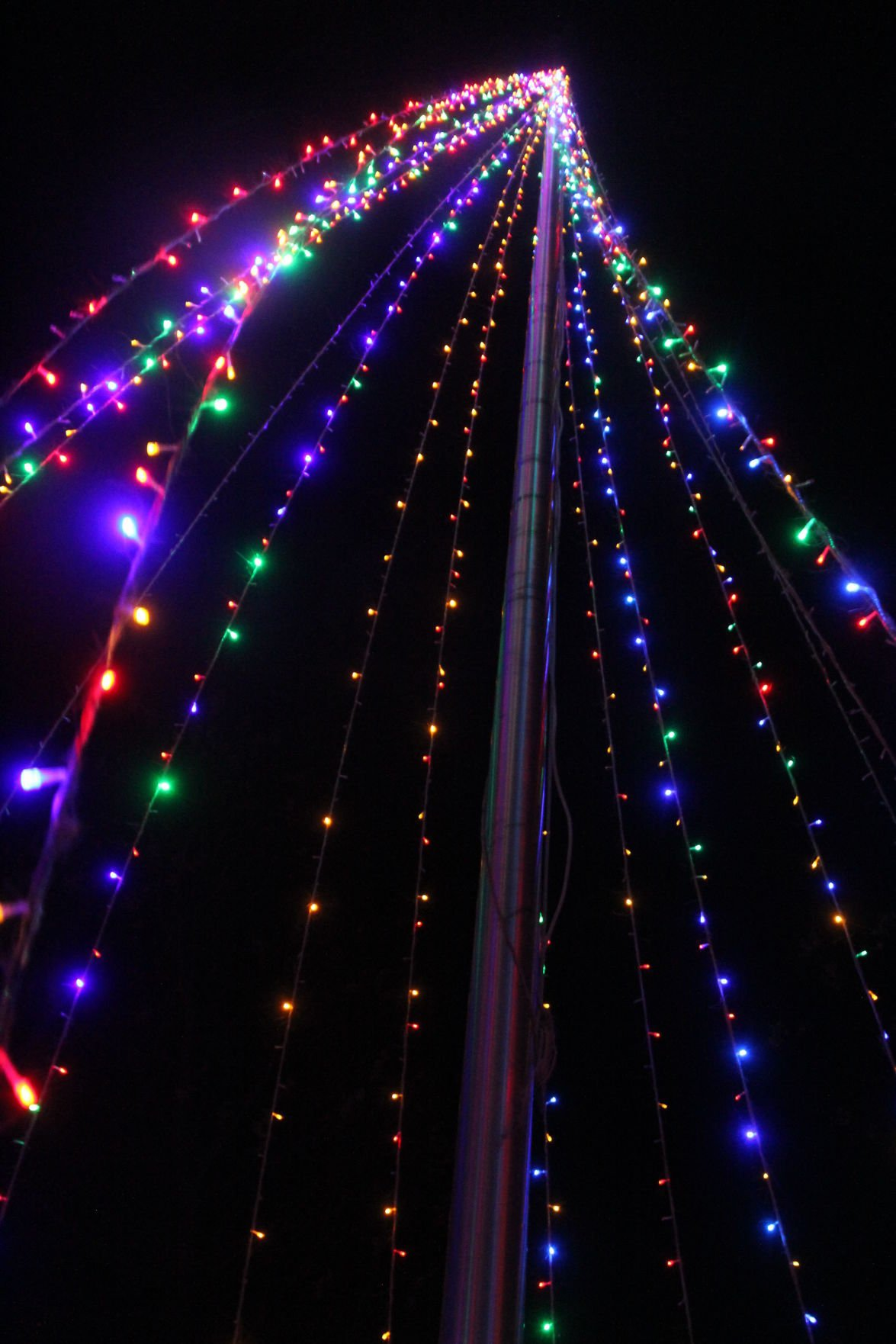 Holiday tour of lights 3