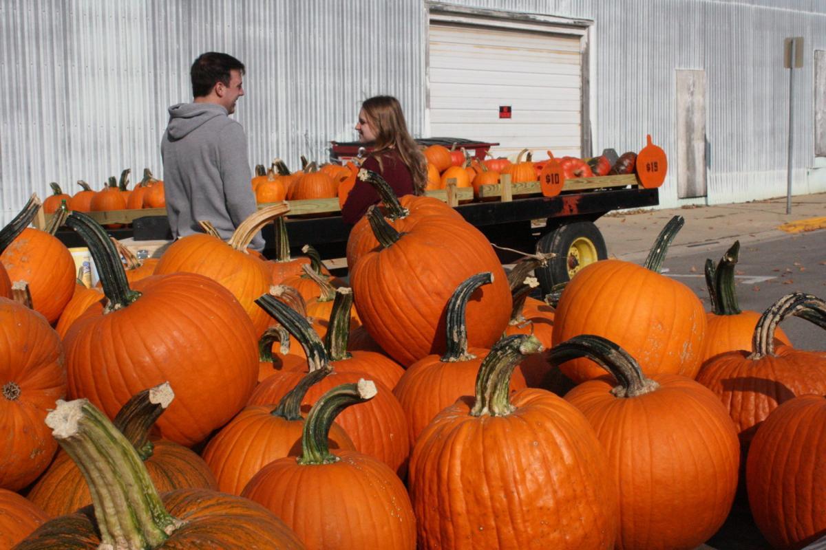 Autumn Artistry -- Pumpkins