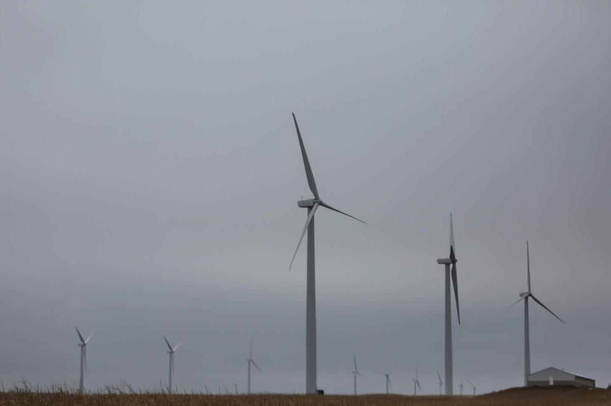 wind farm 2.JPG