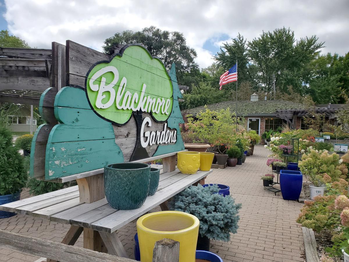Blackmore Nursery Autumn Landscaping Latest News Globegazette Com