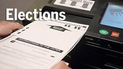 Elections voting weblogo