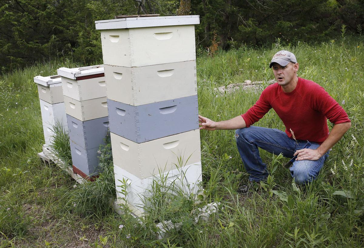 Sioux City honey business