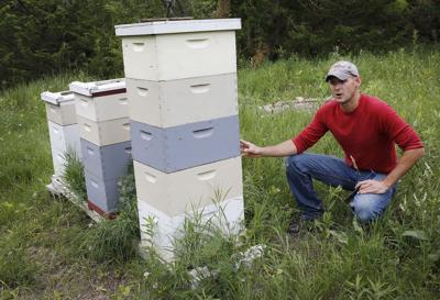 Sioux City honey business