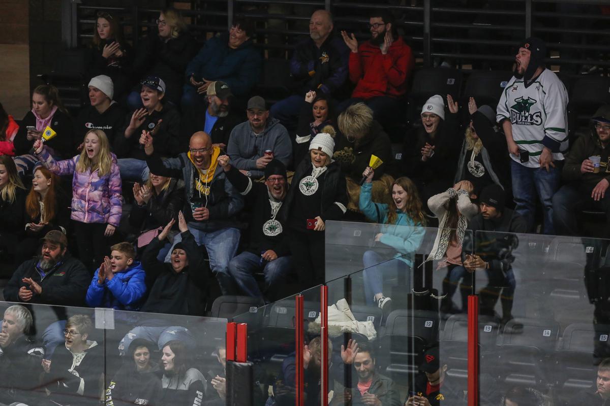 Hockey Bulls vs. Breezy Point 7