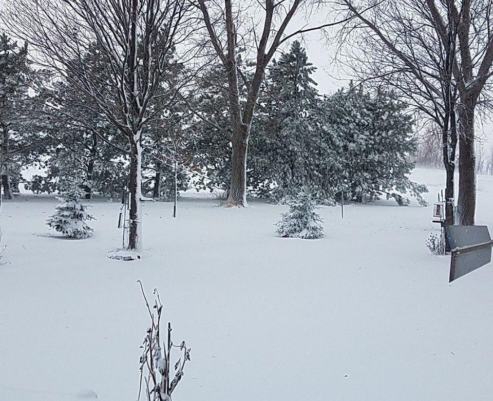 14. snow