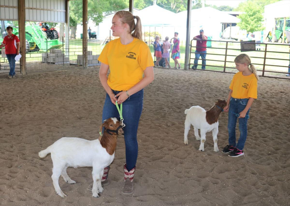 Abigail Larson, Elsa Adams Goats.JPG