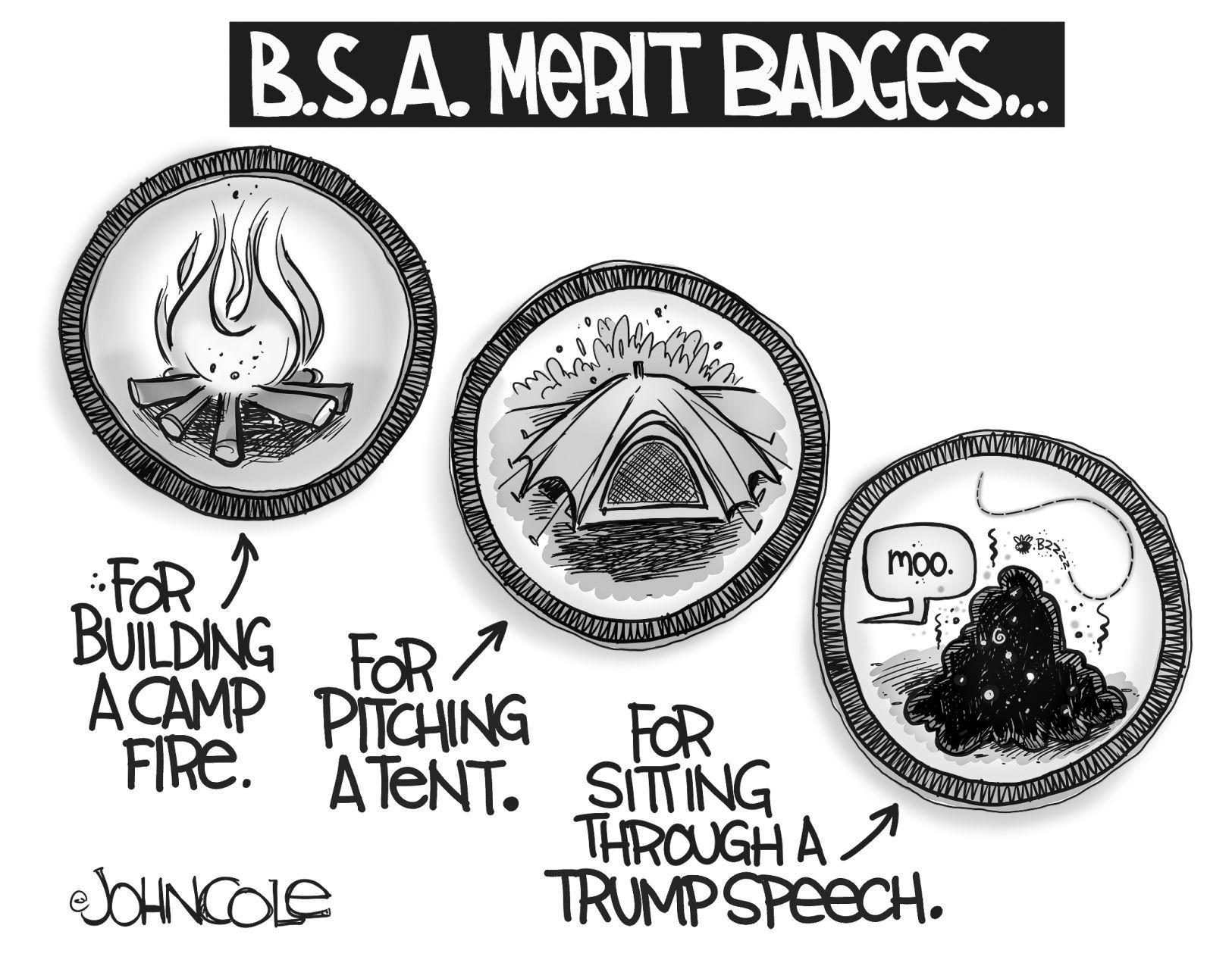 Political cartoons: Hillary, Scaramucci, Boy Scouts
