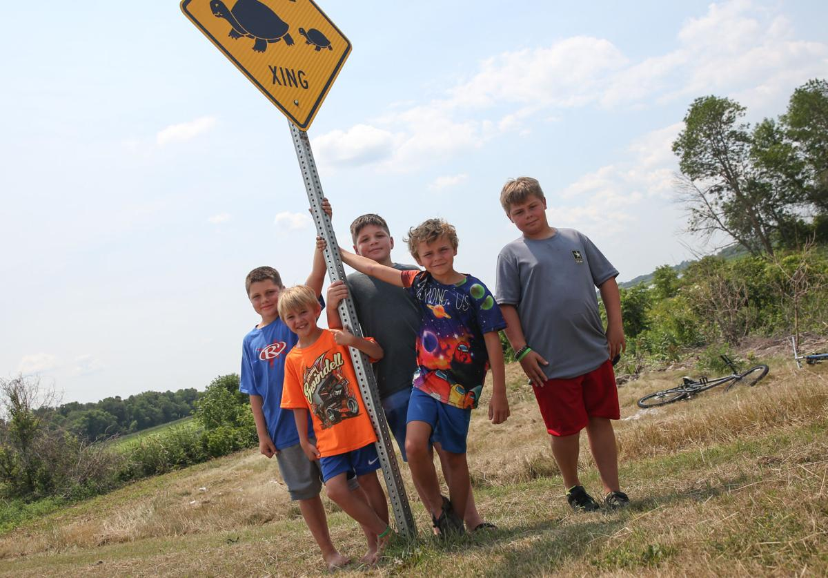 Turtle Crossing - xing sign