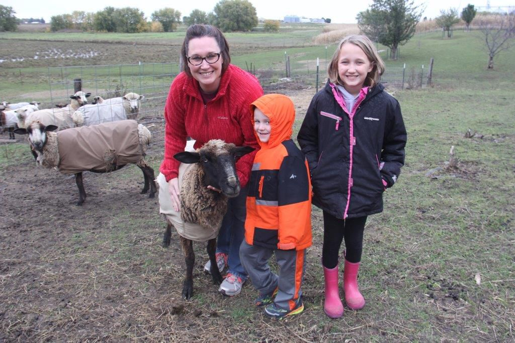 Titonka family raises rare sheep
