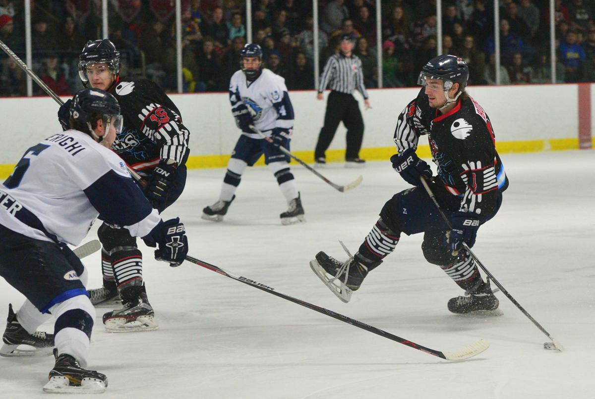 Hockey Bulls vs. Peoria 01