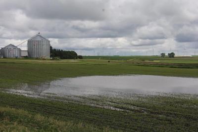 Britt farm field flooded