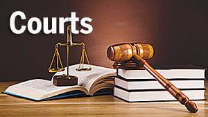 Courts weblogo