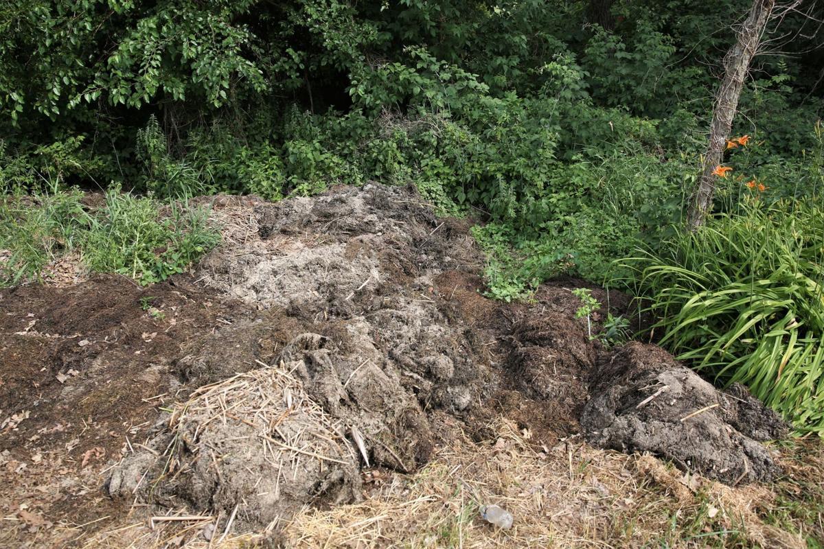 Clear Lake waste- Pile 2