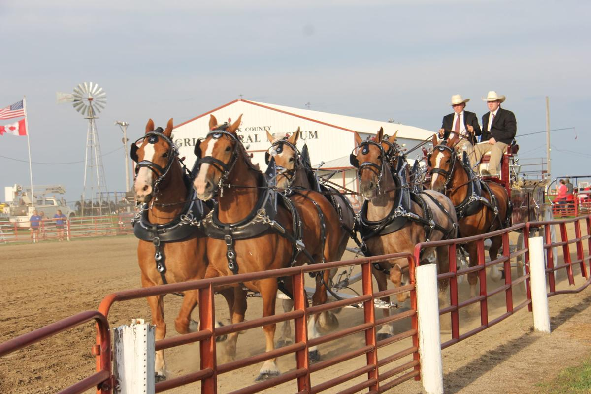 Labor Day tradition: Britt Draft Horse Show is this weekend (with ...