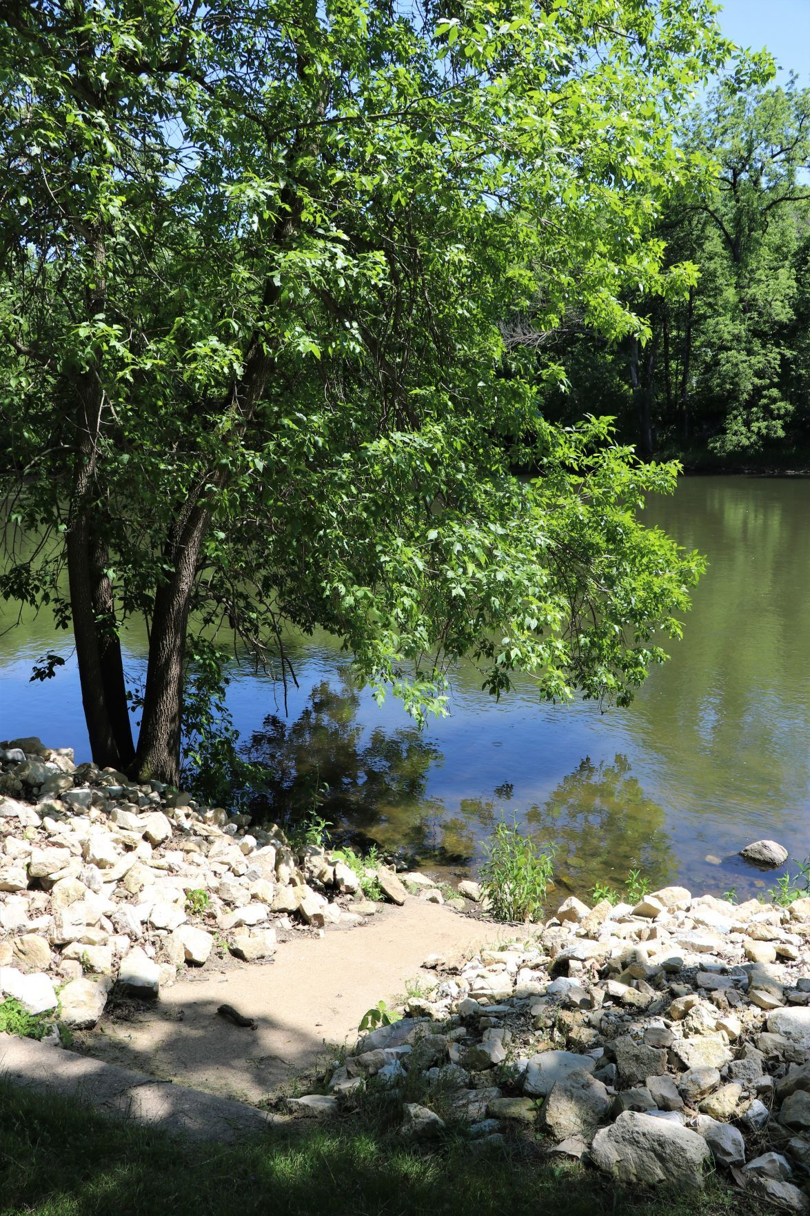 Canoe access at Spring Park