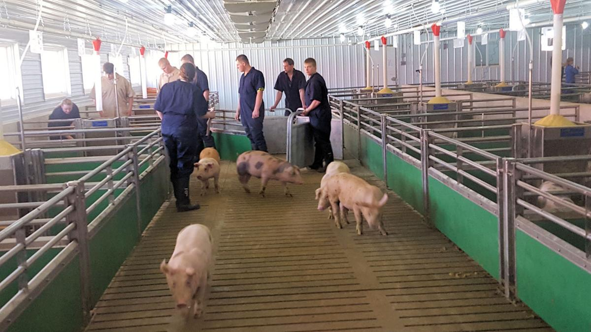 New ag education center opens at cresco fairgrounds for Howard county craft fair
