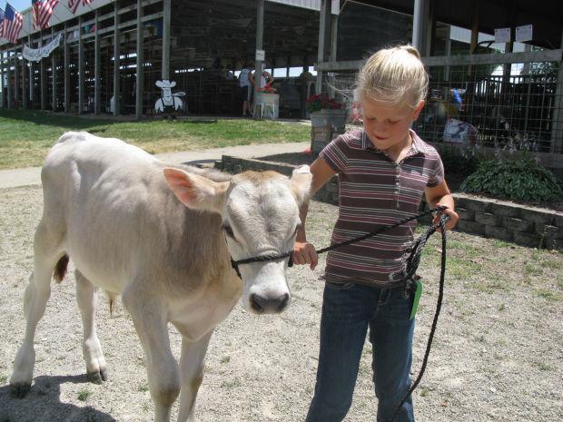 Floyd County Fair
