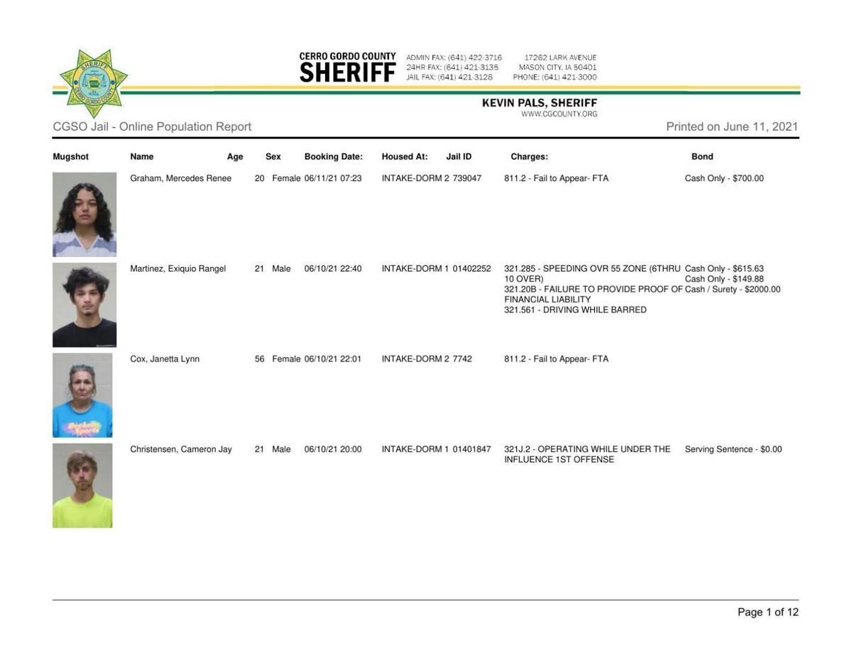 6-11 Cerro Gordo County jail inmates