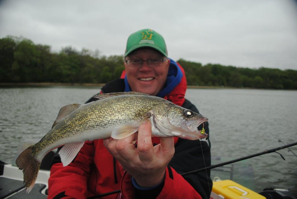 Jig-caught spring walleye