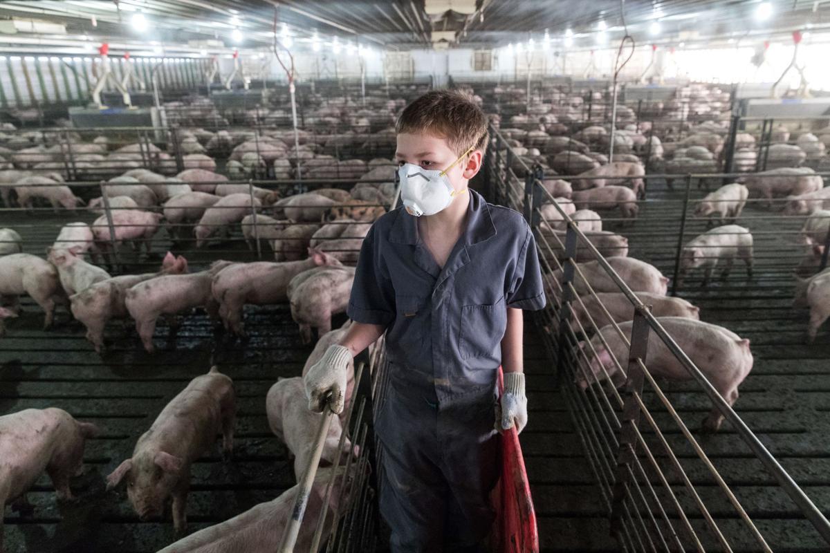 Exchange-Livestock Expansion