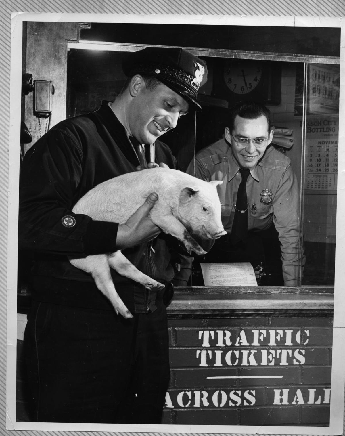 Statzer and Stephens with pig at old station.