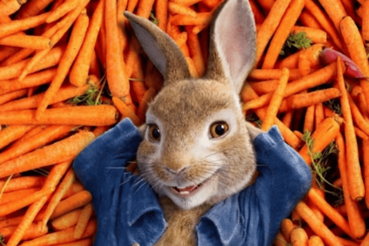 Why parents are boycotting the new 'Peter Rabbit' movie