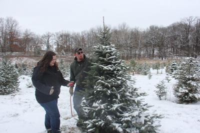 Fisher Christmas Tree Farm