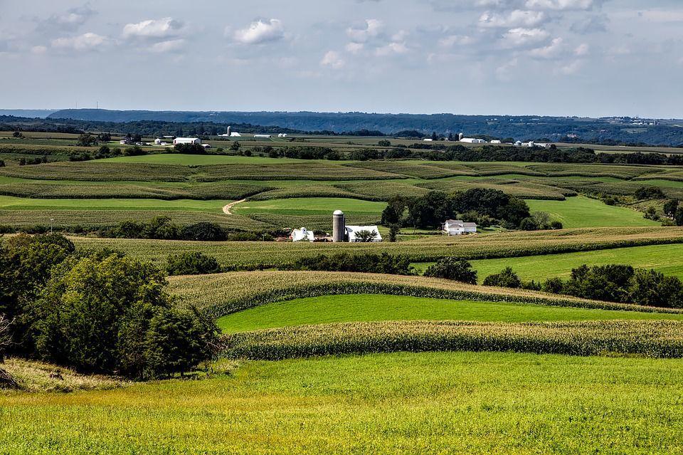Iowa state weblogo