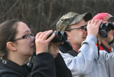 Iowa birders