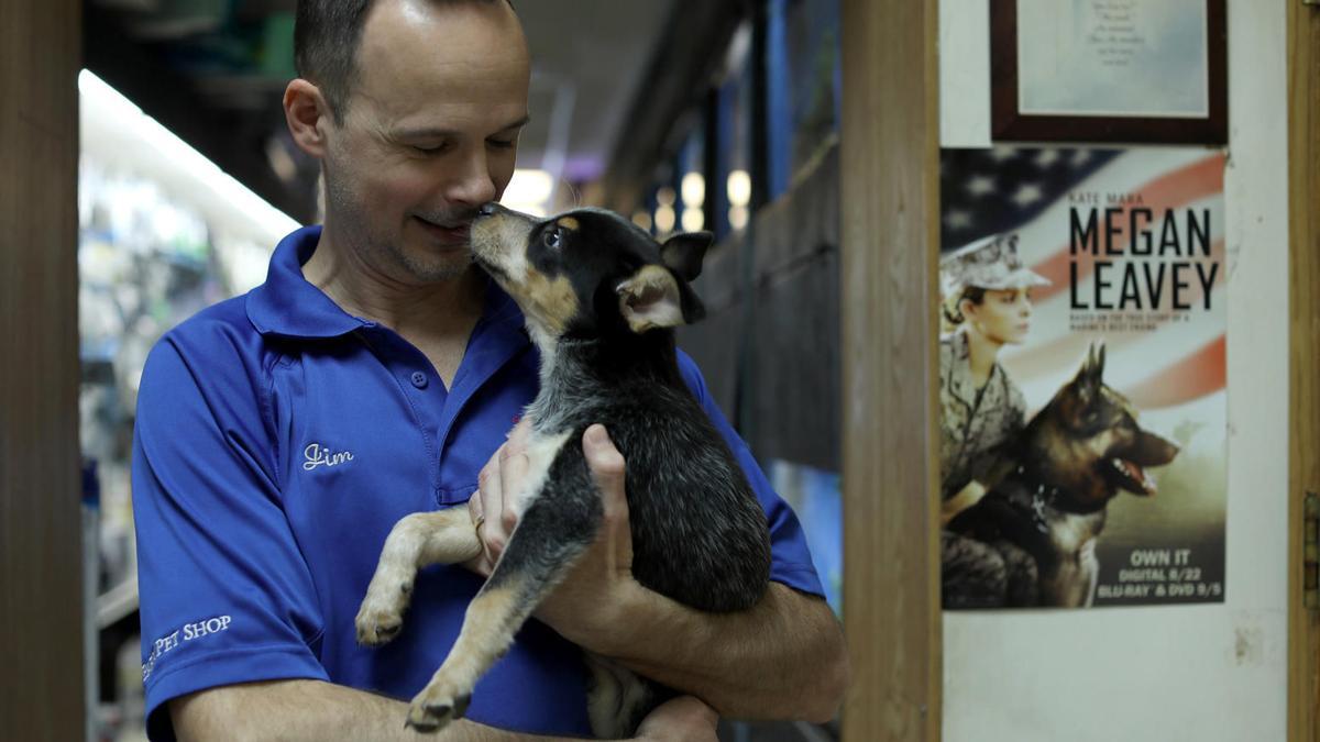 Park Pet Shop owner