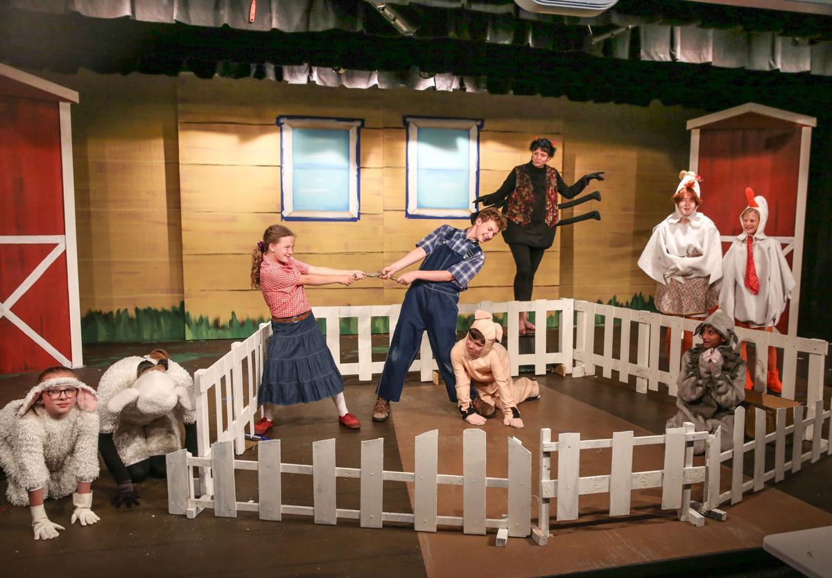 Stebens Children's Theatre - Charlotte's Web - kids cast