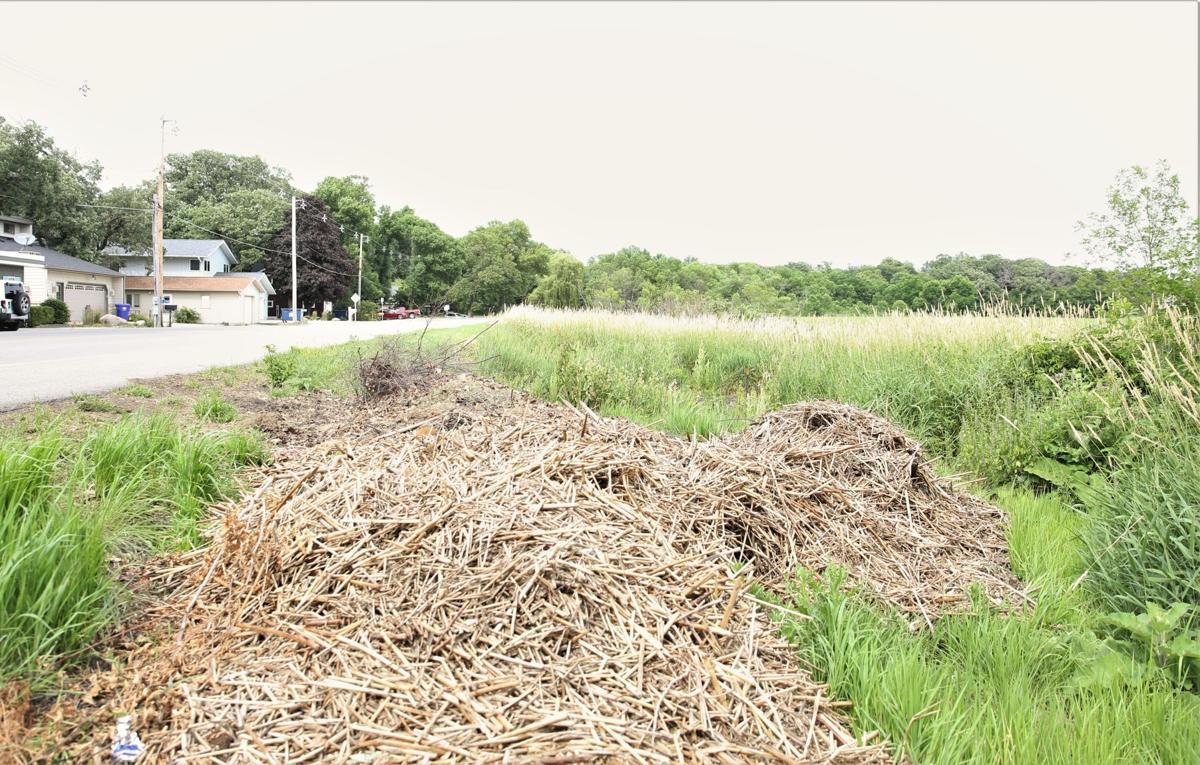 Clear Lake waste- Pile