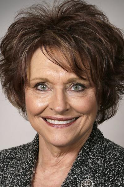 Speaker Linda Upmeyer 2017
