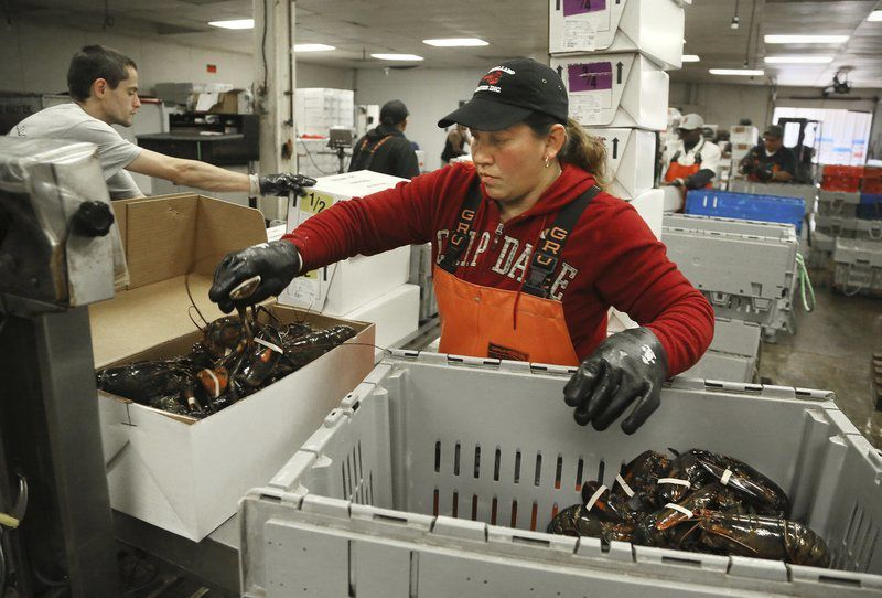 Lobster billsurvives budget deal Legislation to allow in-state sale, processing of unfrozen, shell-on, lobster parts