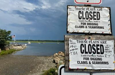 UPDATE: Red tide closes Cape Ann shellfishing beds