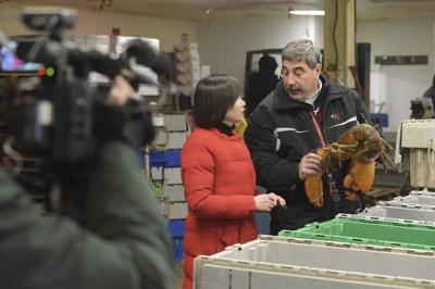 Lobster industry pinched by tariffs