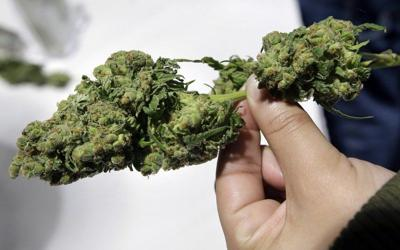 New push for racial equality in the marijuana trade