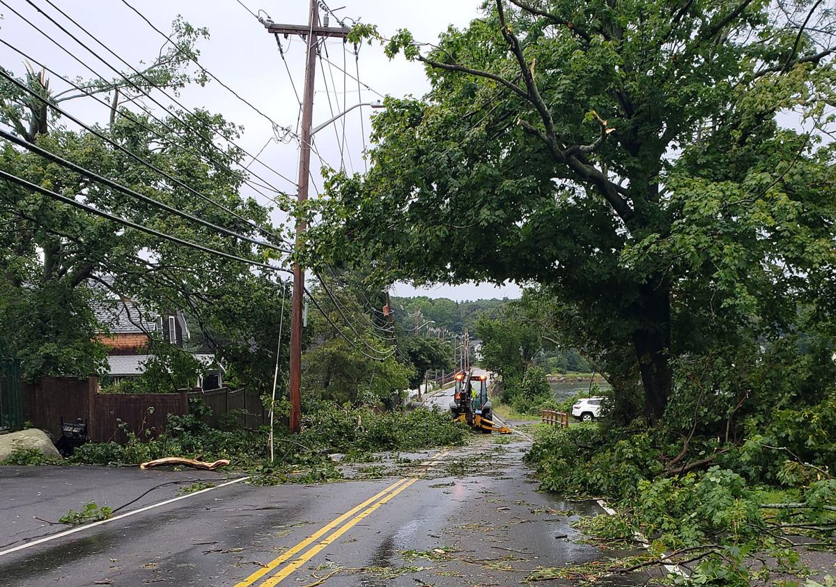 Damage from a microburst on Wednesday, July 31, 2019