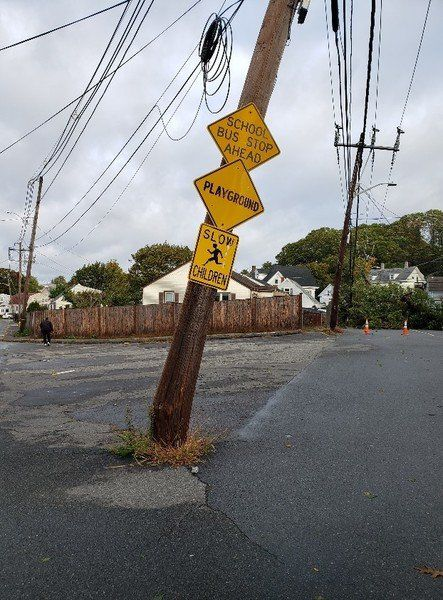 City DPW chief: Downed trees in city's every nook, cranny