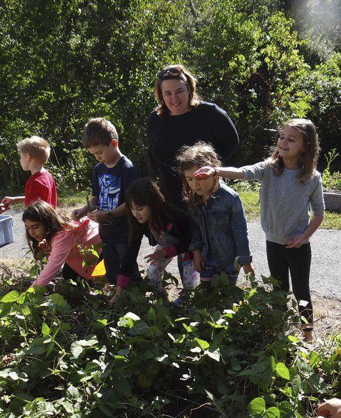 Schoolchildren celebrate Fall Harvest Day