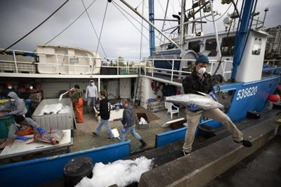 Senators:Without aid, fisheries may sink at dock